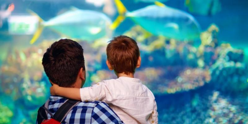 Vater und Sohn in einem Aquarium