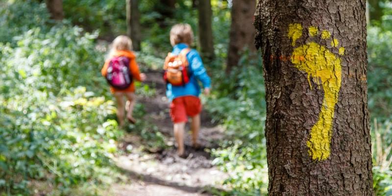 Kinder laufen durch einen Wald